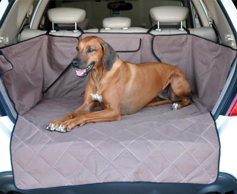 How to get dog hair out of your car